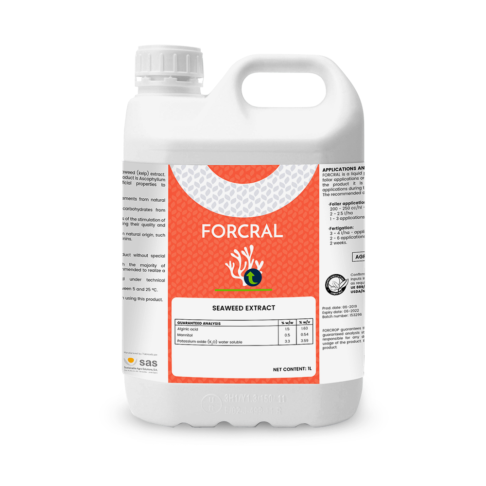 Forcral - Productos - CODA - SAS