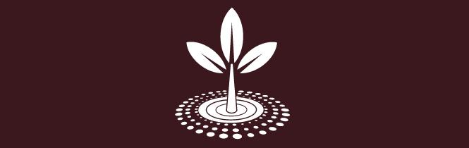 Soil improvement - CODA